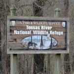 Tensas River National Wildlife Refuge