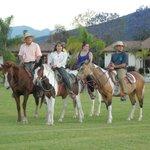 Paseos a caballo muy seguro y plascentero