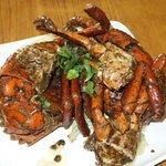 Giant Black Pepper Crab 2.4kg