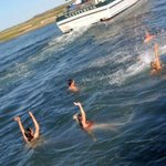 swimming fun off the dock