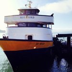 The Tiburon - SF Ferry, Blue and Gold Line. $11 adult one way