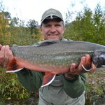 An exceptional Dolly Varden from the Kenai River.