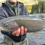 Kenai River trout fishing at its best!
