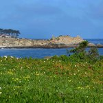 Pacific Grove Oceanview Blvd