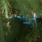 Night View Pool