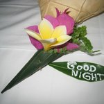 Good night wishes on our bed every night