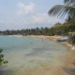 Palm fringed beach