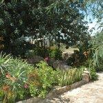 Les jardins autour de la maison