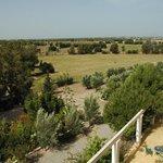 un parc de 15 hectares