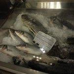 Bancone pesce