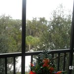 looking out our small but private balcony