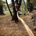 Weiwei was doing the balancing.
