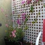 Private Patio/barbecue area VIP suite