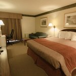 One King Sized Bed Deluxe Room