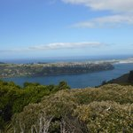 View from Signal Hill Lookout