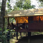 Another tent at Macal River Camp