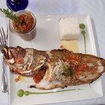 whole grouperas delicious !