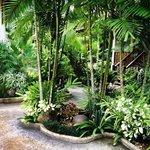 garden on the resort entrance