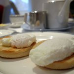 Poached eggs on Muffin