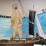 Чучело полярного медведя в музее