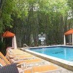 Pool at the Catalina