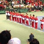 テニス デ杯日本代表