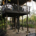 The tree house and the swings are a nice place to hang out when its less sunny