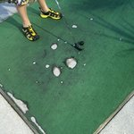 Are these holes on the carpet of EVERY hole a feature of the course?  Just asking...