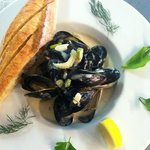 fenchman's bay wild mussles