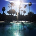 the pool near the breakfast buffet in early january