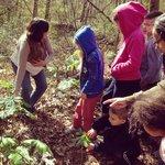 Guided Wildflower Hike