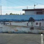 Art History outside about the Guero Canelo