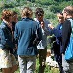 Convivio Rome : picking herbs