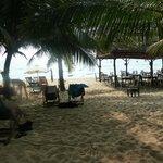 vue sur la plage en venant des bungalows