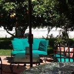 Grand Suite private yard