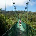 View of one of the longer bridges