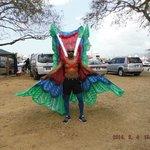 macaw costume QPS