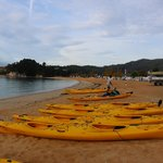 Kayak Hire/Guided Tours