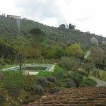 Photo of Agriturismo Mareli
