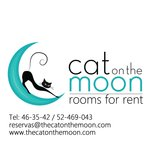 Cat on the Moon Foto
