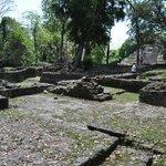 Some of the living quarter ruins at Lamanai