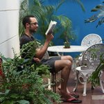 Reading in the patio (95346366)