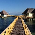 Punta Caracol