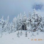 In Sun Peaks we love snow !