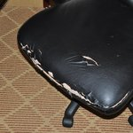 Desk Chair Needs Covering