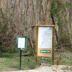 Hiking trail trailhead with map