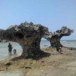 ハートの形をした岩