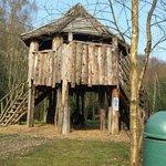 The tree house along the woodland walk