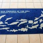下田海中水族館のマットの絵