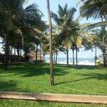 lawn n the beach beyond